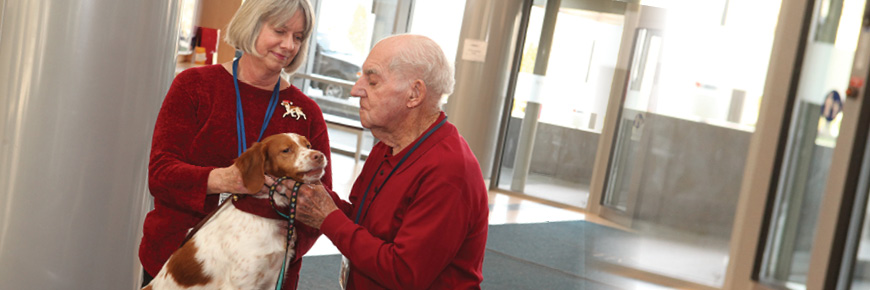 An older man and a woman, both in red sweaters, pet a brown and white medium sized dog in a hospital entrance-way.